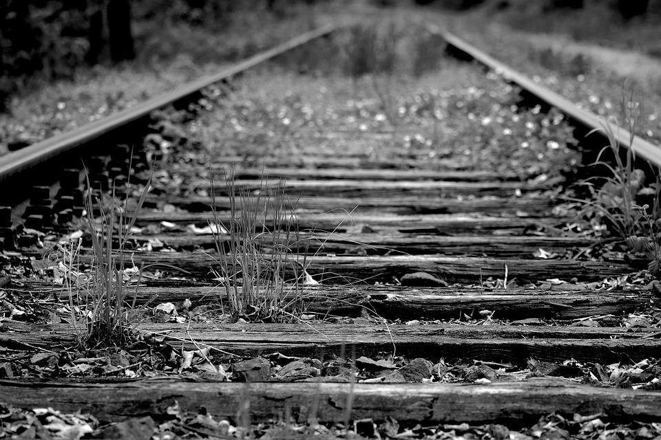 """La ferrovia jonica:  quel """"filo rosso"""" che può unire la Magna Grecia in un grande progetto di coesione e di sviluppo territoriale"""